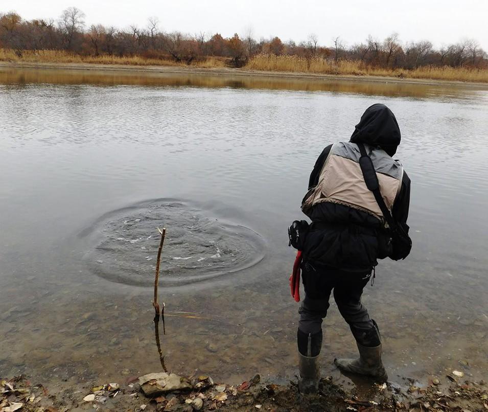 как ловить хищника на речке