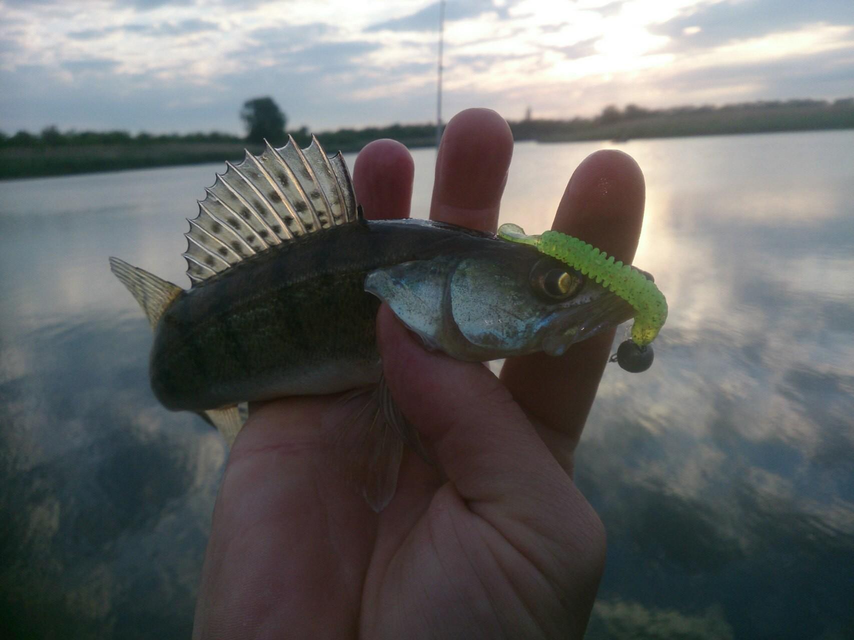 рыбалка река кирпили ольховский