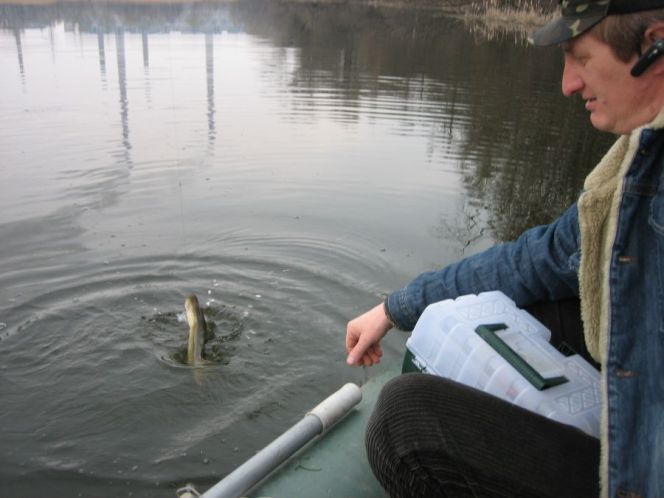 рыбалка мертвый донец отчет