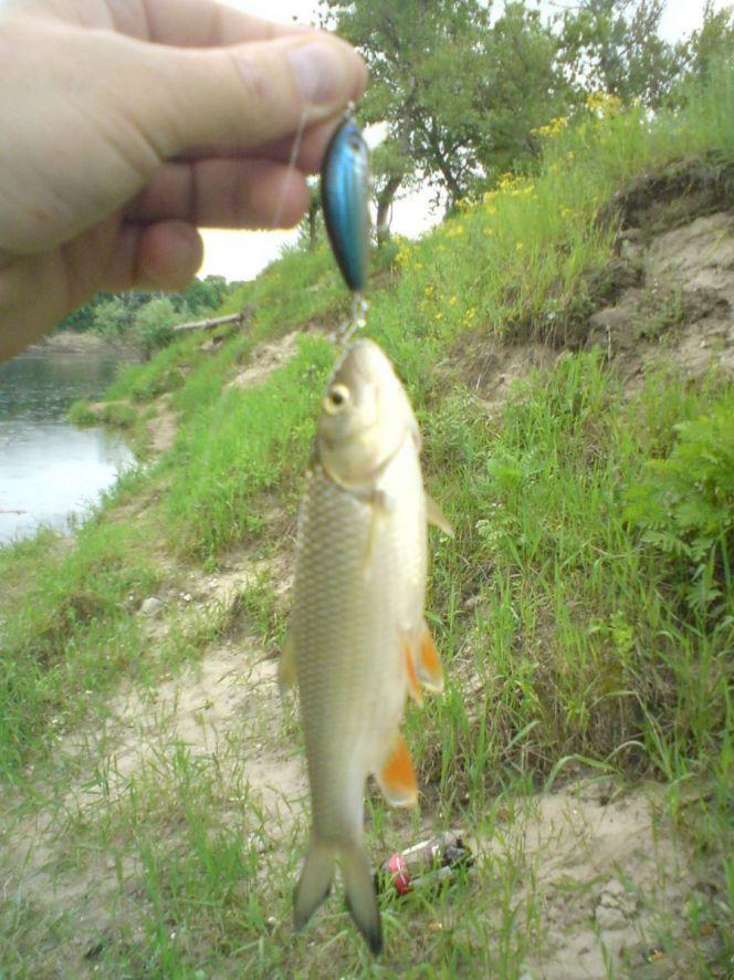 Рыбалка красный яр омск